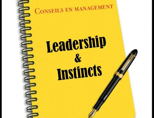 Leadership & Instincts